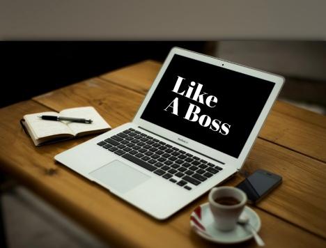 like a boss photo